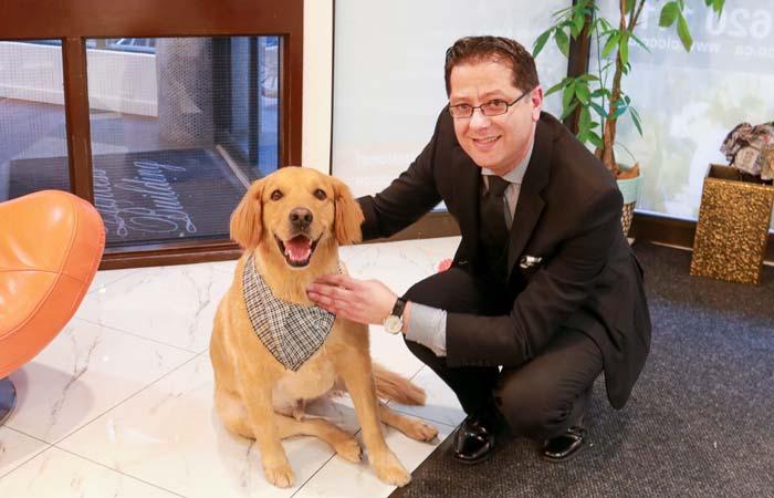 dog-therapy-cornerstone-2