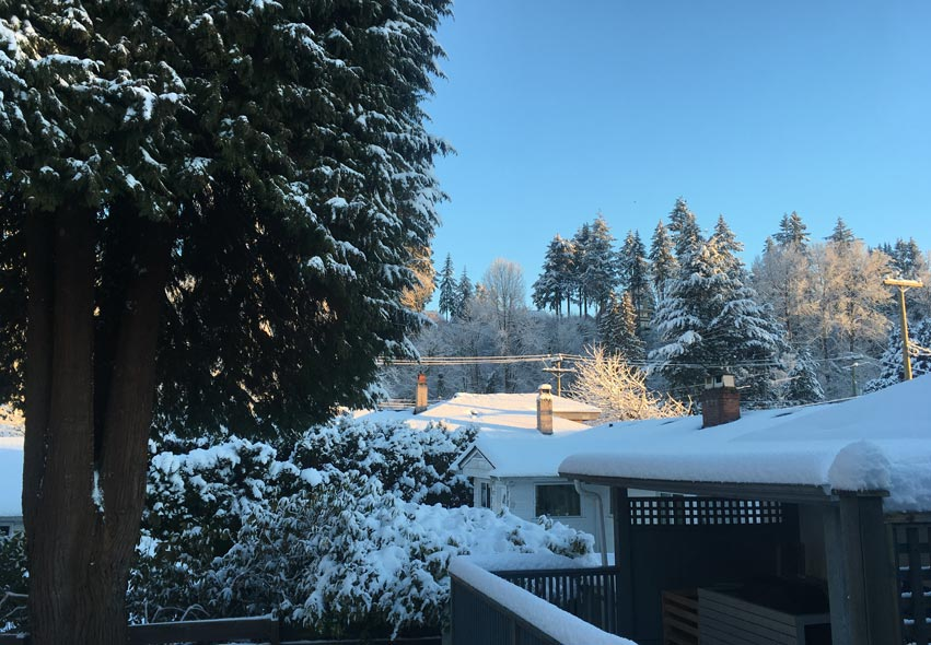 snowy days in vancouver