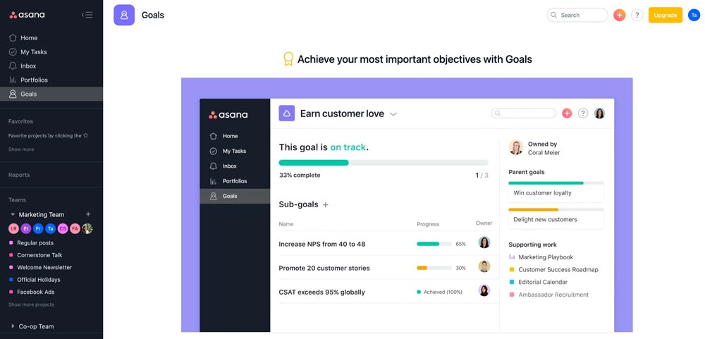asana management software